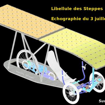 Libellule des Steppes : 1ère échographie